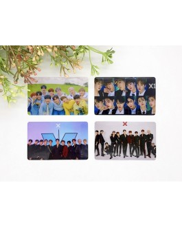 X1 Card Sticker (2pcs)